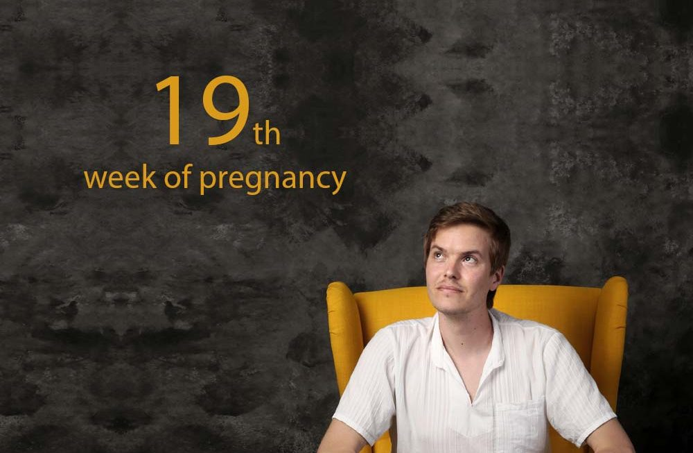 19th Week of Pregnancy