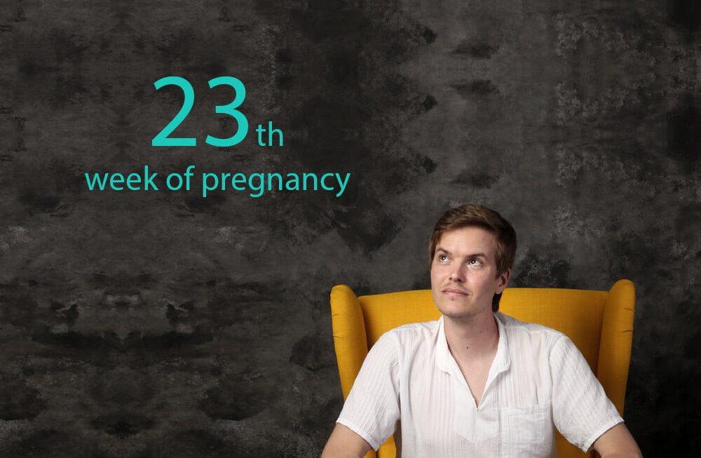 23rd week of pregnancy