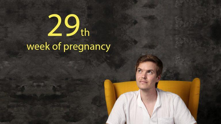 29th week of pregnancy