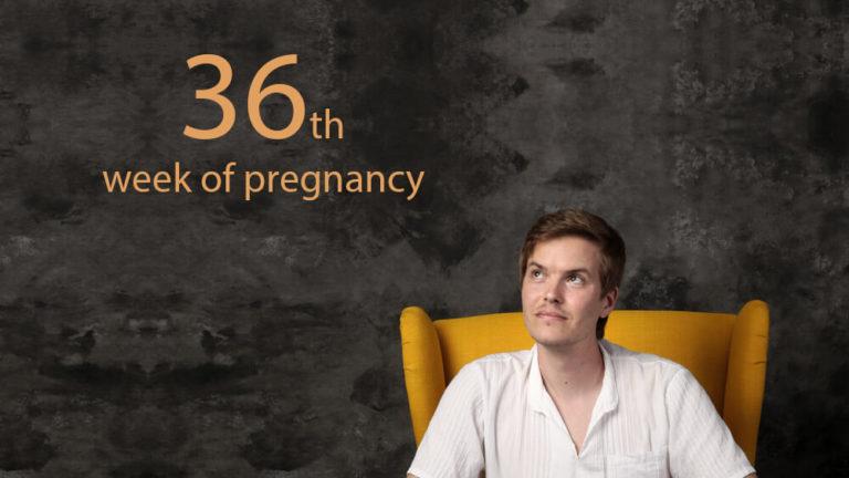 36th week of pregnancy