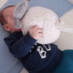 106-child-and-a-sheep